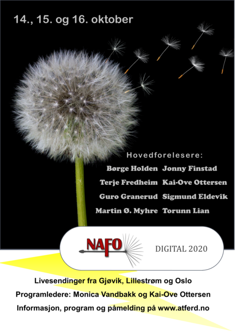 NAFO Digital 2020